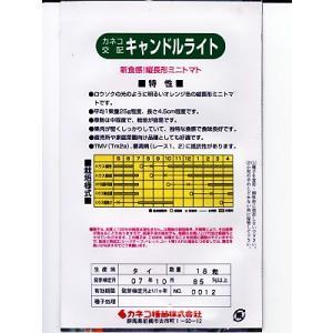 ミニトマト種 カネコ交配 キャンドルライト |green-depo-1|02