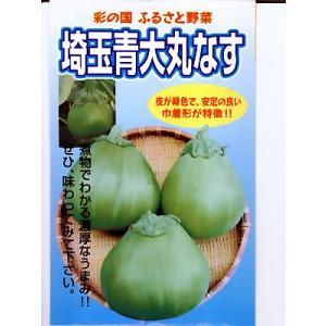 埼玉青大丸なす  地方野菜のなすの種です。 種の通販ならグリーンデポ|green-depo-1