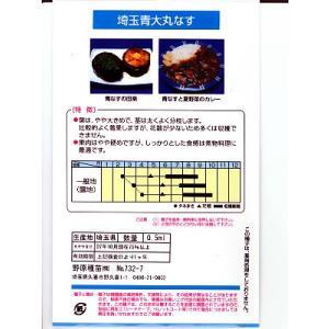 埼玉青大丸なす  地方野菜のなすの種です。 種の通販ならグリーンデポ green-depo-1 02