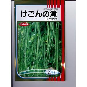 三尺ささげの種 けごんの滝   サカタのタネの三尺ささげ種子です。 green-depo-1