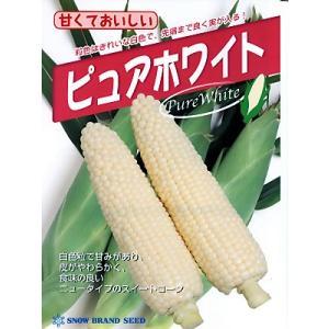 ピュアホワイト  雪印種苗のホワイトトウモロコシ種子です。