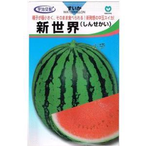 宇治交配 新世界スイカ 丸種株式会社のスイカ品種です。|green-depo-1