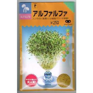 スプラウト種子 アルファルファ 中原採種場のスプラウト種子です。|green-depo-1
