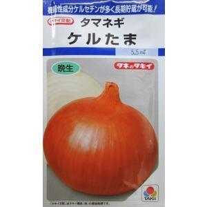 タキイ交配 ケルたま  タキイ種苗の玉ねぎ品種です。 green-depo-1
