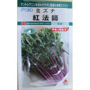 タキイ育成ミズナ 紅法師   タキイ種苗の水菜品種です。|green-depo-1