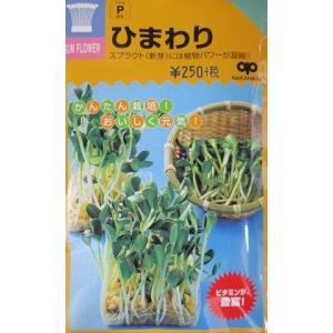 スプラウト種 ひわまり   スプラウト用のひまわり種子です。|green-depo-1