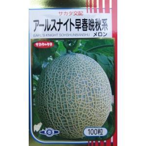サカタ交配 アールスナイト早春晩秋系メロン  サカタのタネのネットメロン品種|green-depo-1