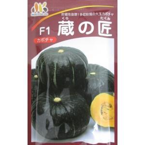 南瓜種 F1 蔵の匠  みかど協和のカボチャ品種です。南瓜の種子はグリーンデポ|green-depo-1