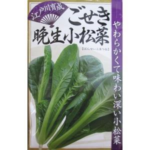 ごせき晩生小松菜は、江戸時代から食べられていた純系の小松菜品種です。  非常に貴重で大切な種であると...