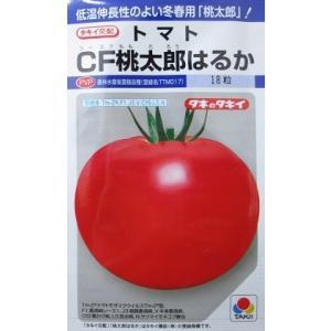 タキイ交配 CF桃太郎はるか  タキイ種苗 桃太郎シリーズの大玉トマト品種です。|green-depo-1