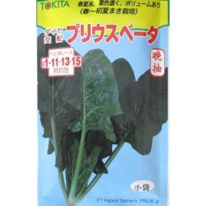 プリウスベータ トキタ種苗のほうれん草品種です。|green-depo-1