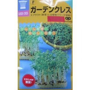 ガーデンクレス(胡椒草)  中原採取場のスプラウト用種子です。 |green-depo-1