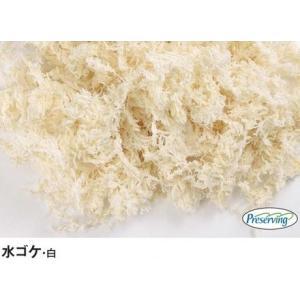 モス・プリザーブド:水ゴケ・白<1袋(約20g)>プリザーブドフラワーのアレンジメントに最適♪