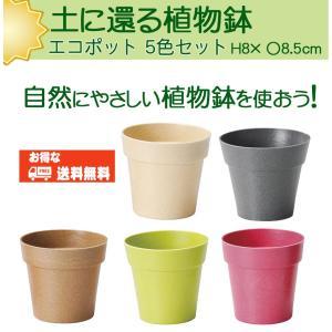 送料無料 エコポット5色セット(土に還る植物鉢)