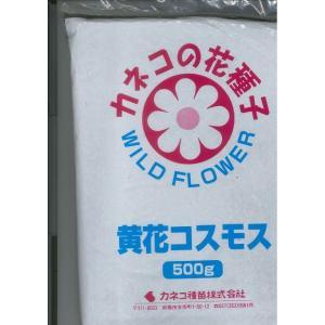 送料無料!景観形成作物 黄花コスモス 500g カネコ種苗