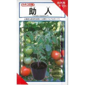 台木用トマト 助人 100粒 カネコ種苗|green-loft