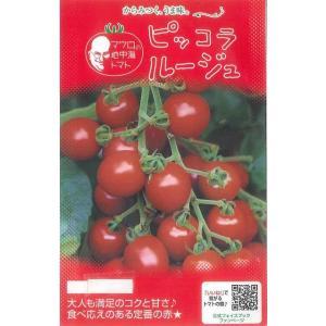 送料無料!野菜種 マウロの地中海トマト ピッコラルージュ コクと甘みを兼ね備えたミニトマト  種・苗...