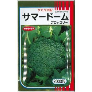 野菜種 ブロッコリー  サマードーム 2000粒 サカタ交配