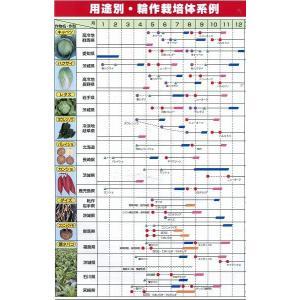 緑肥 ニューオーツ(アウェナストリゴサ) 1kg  カネコ種苗(株)|green-loft|04
