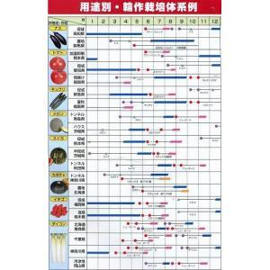 緑肥 ニューオーツ(アウェナストリゴサ) 1kg  カネコ種苗(株)|green-loft|05