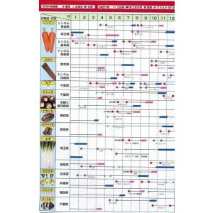 緑肥 ニューオーツ(アウェナストリゴサ) 1kg  カネコ種苗(株)|green-loft|06