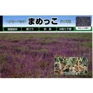 緑肥 ヘアリーベッチ まめっこ 1kg  カネコ種苗(株)|green-loft|02