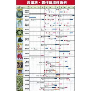 緑肥 ヘアリーベッチ まめっこ 1kg  カネコ種苗(株)|green-loft|06