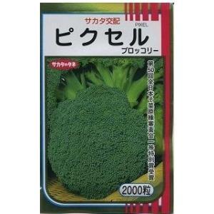 野菜種 ブロッコリー ピクセル 2000粒 サカタのタネ
