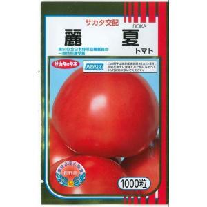 送料無料!!野菜種 トマト 麗夏 果実は豊円で果色・色まわりにすぐれ、硬玉で肉質よく、日もち性極良で...