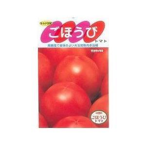 大玉トマト ごほうび 20粒 サカタのタネ