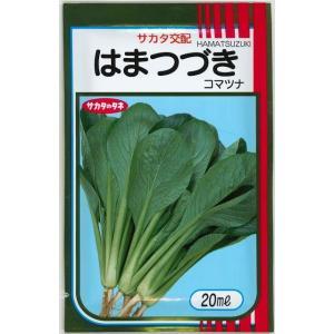 野菜種 小松菜 はまつづき