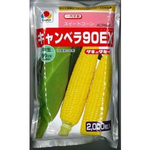 野菜種  とうもろこし キャンベラ90EX 新品種です!!   種・苗・農業資材 品揃え豊富!農家さ...
