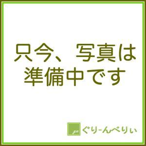 苔玉 アリドオドシ(一両)のコケダマ green-very