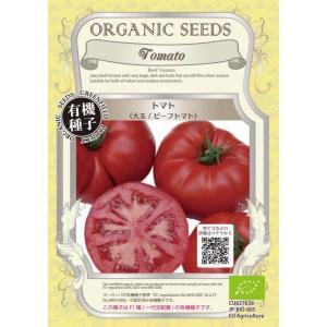 トマト <大玉 / ビーフ トマト> F1種