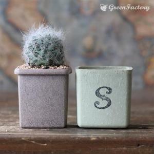 サボテン多肉植物5個セット SMILEバージョン|greenfactory|05