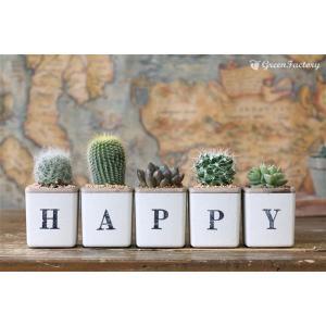 サボテン多肉植物5個セット HAPPYバージョン|greenfactory