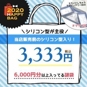 ▲▲▲□ 2020謎福袋 予約販売 送料無料・シリコン型主役 おまかせ謎袋3333円(税込) スライドする ラグジュアリーBOXのおまけ付6000円分以上入ってる 年末福袋