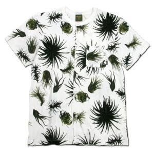 Phatee (ファッティー) SNAP TEE ヘンプコットン ノーカラー Tシャツ / TILLANDIA|greenplanet