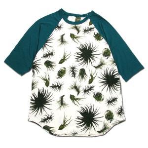 Phatee (ファッティー) LOOSE BALL TEE ヘンプコットン ビッグシルエット ラグラン 7分袖 Tシャツ / TILLANDIA x FOREST greenplanet