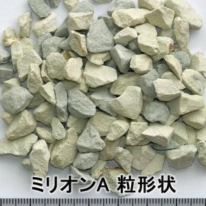 ミリオンA 3kg 珪酸塩白土 ブロックシリコ|greenplants|02