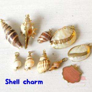 【ゆうパケット可】海からの贈り物♪天然の貝殻チャーム♪巻貝・...