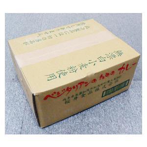 【お買い得12個セット】桜井食品 ベジタリアンのためのカレー 160g|greens-gc