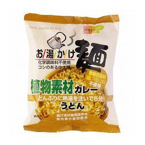 創健社 お湯かけ麺植物素材カレーうどん 81g greens-gc