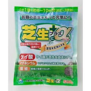朝日工業 芝生にプラスα 500g   肥料 活力剤 greentime