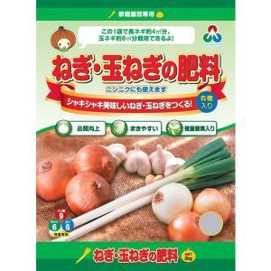 朝日工業 ねぎ・玉ねぎの肥料 2KG | 専用肥料 活力剤|greentime