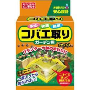 コバエ取りガーデン用 1セット入 ハンガー用台紙 キング園芸|greentime