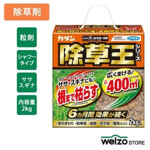 除草剤 カダン除草王 オールキラー粒剤 2kg フマキラー|greentime