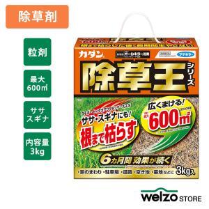 除草剤 オールキラー粒剤 3KG フマキラー|greentime