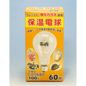 旭光電機 ひよこ保温球 100V 60W 屋内用 | 温室 ビニール温室|greentime