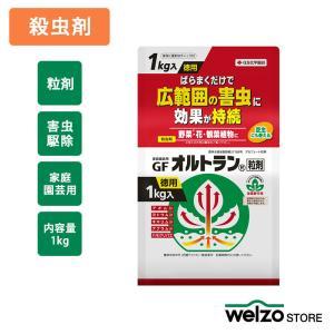 殺虫剤 GFオルトラン粒剤 1kg 住友化学園芸|greentime